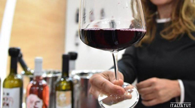 Итальянские вина белые сухие название