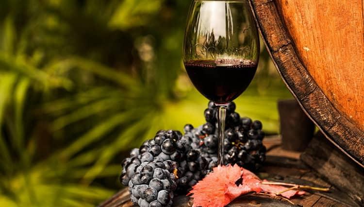 Виноделие тосканы