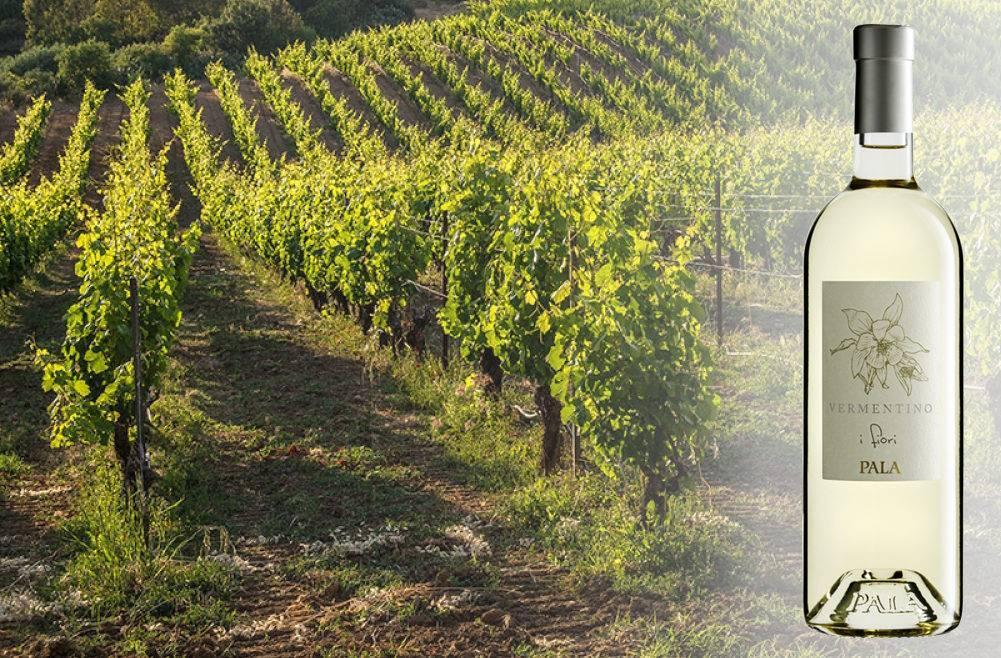 Вино vermentino
